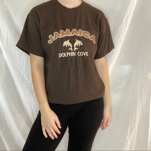Jamaica Dolphin Cove Embroidered Brown Tee Shirt